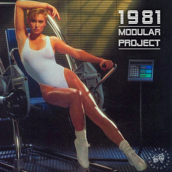 MODULAR PROJECT - 1981 Sisters & Brothers Vol 06