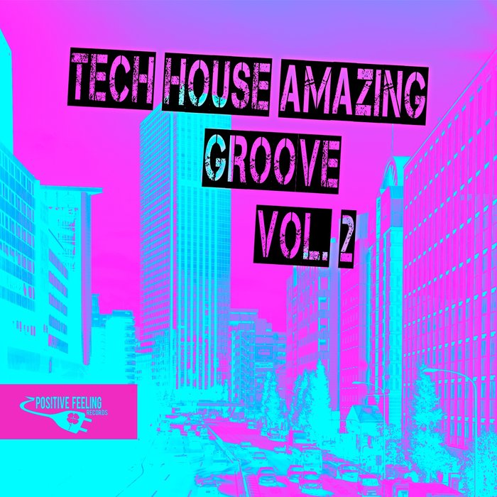 THE MINIMAL PUPPETS/JASON RIVAS/DIE FANTASTISCHE HUBSCHRAUBER/LAYLA MYSTIC/ORGANIC NOISE FROM IBIZA/MAHE SCHULZ/OLD BRICK WAREHOUSE - Tech House Amazing Groove Vol 2