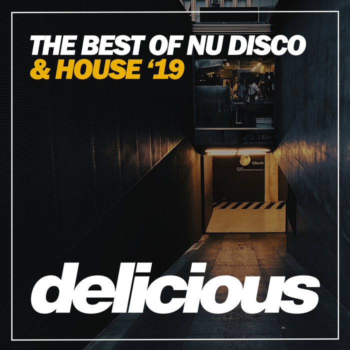 VARIOUS - The Best Of Nu Disco & House '19