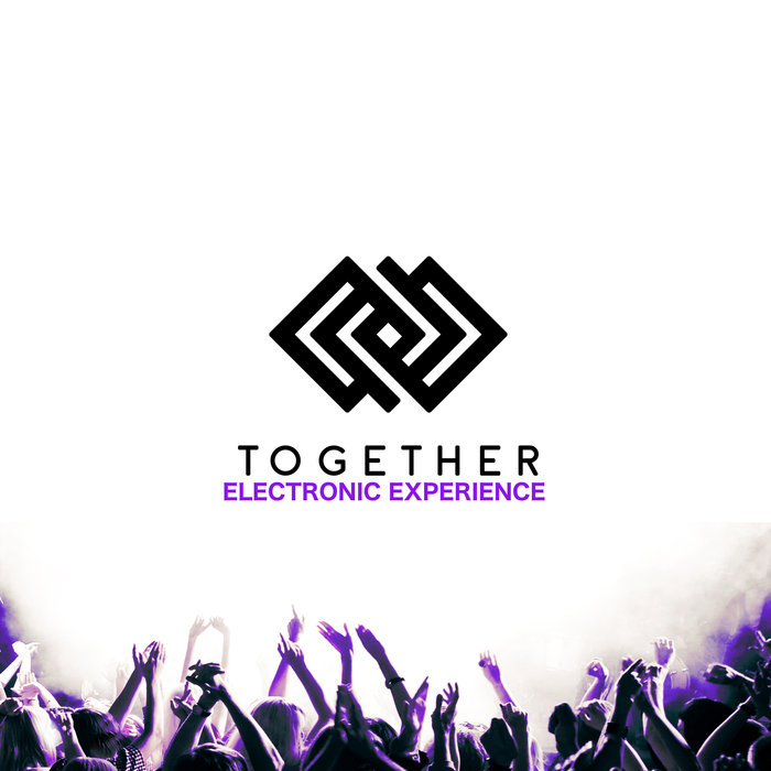 VARIOUS - Together Electronic Experience Vol 12