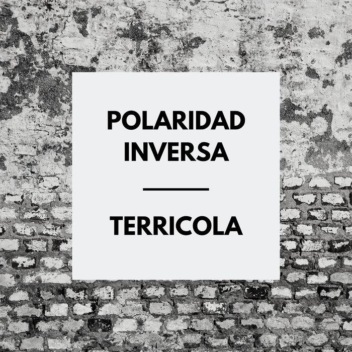 POLARIDAD INVERSA - Terricola
