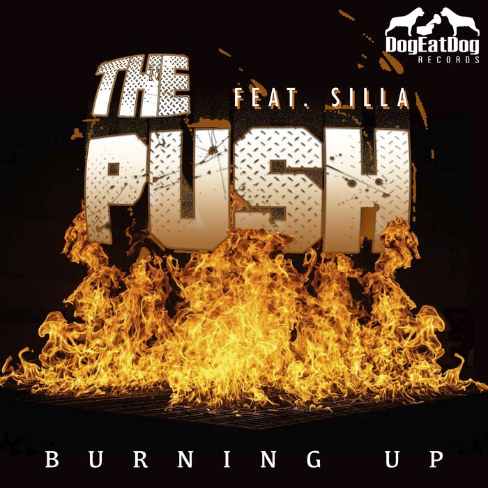 THE PUSH feat SILLA - Burning Up