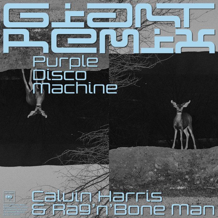 CALVIN HARRIS/RAG'N'BONE MAN - Giant (Purple Disco Machine Extended Remix)