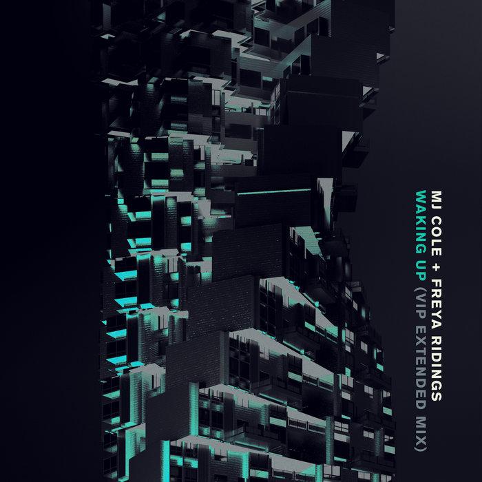 MJ COLE/FREYA RIDINGS - Waking Up