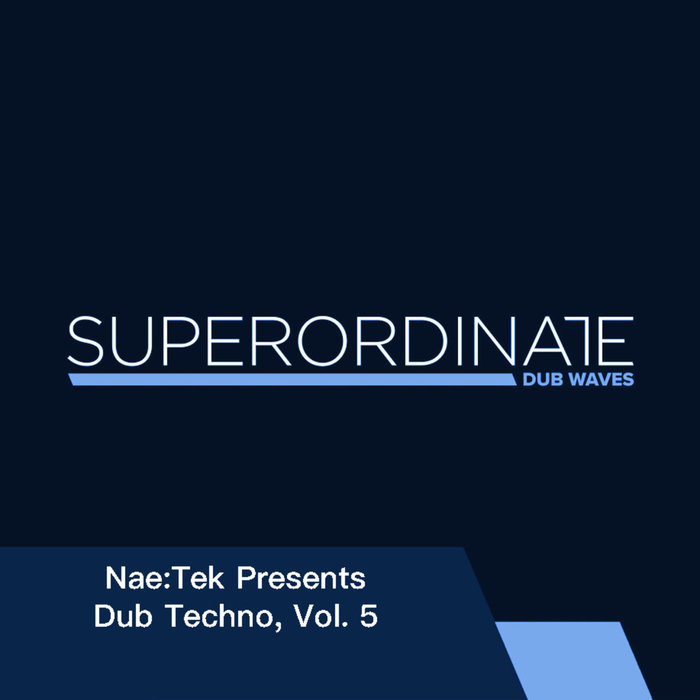 VARIOUS/NAE:TEK - Nae:Tek Presents: Dub Techno Vol 5