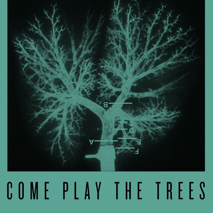 SNAPPED ANKLES - Come Play The Trees (Crooked Man Remixes)