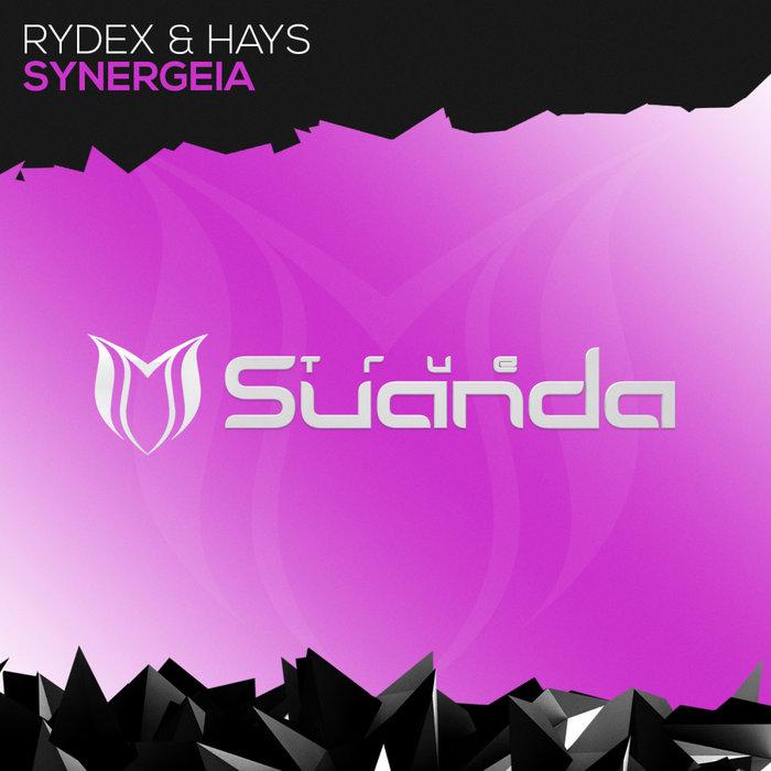 RYDEX & HAYS - Synergeia