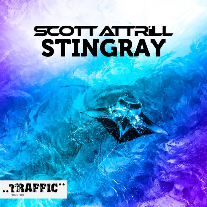 SCOTT ATTRILL - Stingray