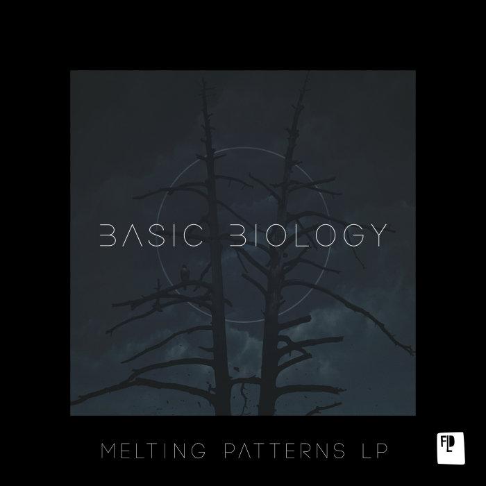 BASIC BIOLOGY/MEGAN MCKAY/BLAKE BRADY - Melting Patterns LP