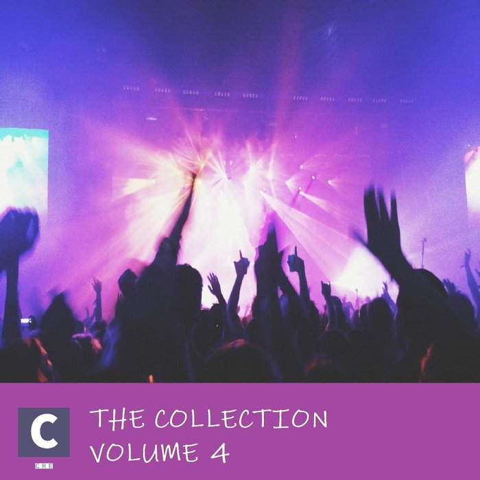 VARIOUS - The Collection Volume 4