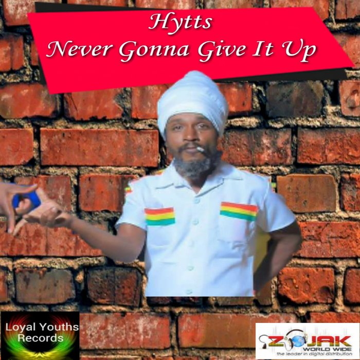 HYTTS - Never Gonna Give It Up