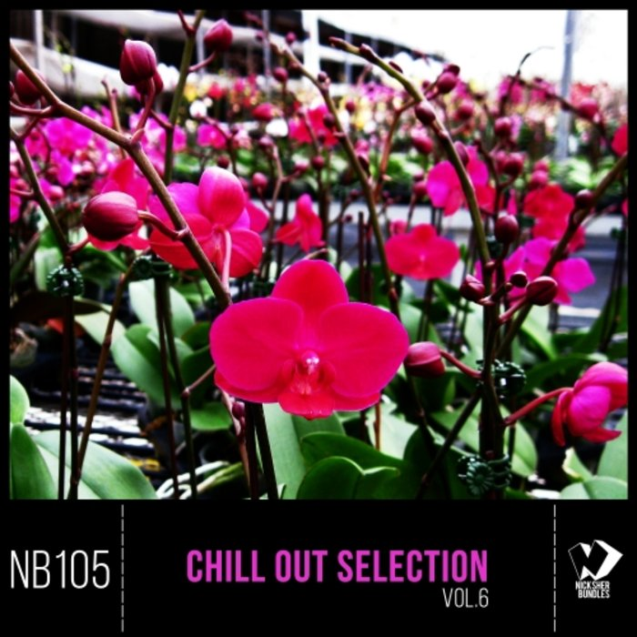 VARIOUS - Chill Out Selection Vol 6