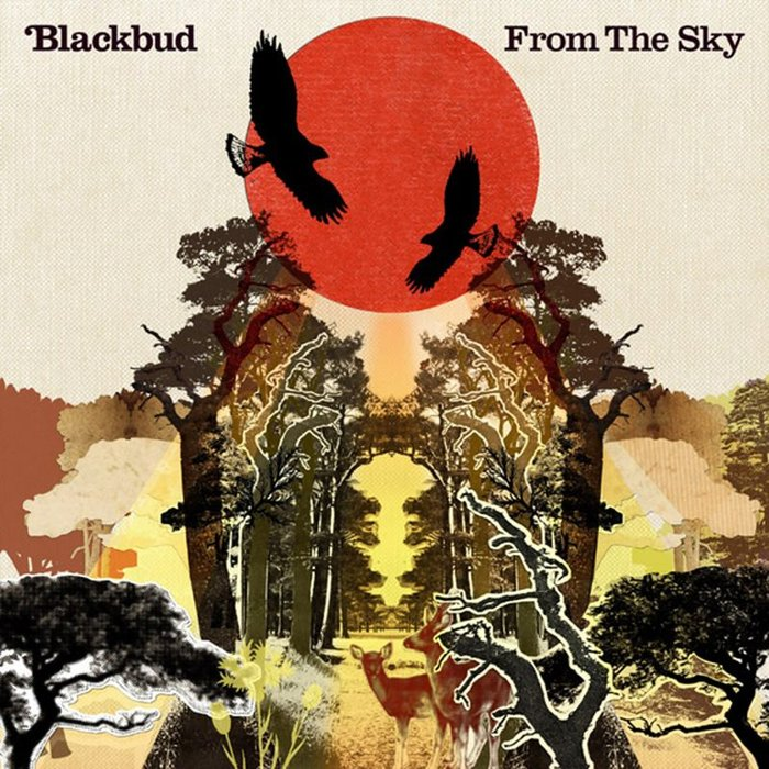 BLACKBUD - From The Sky