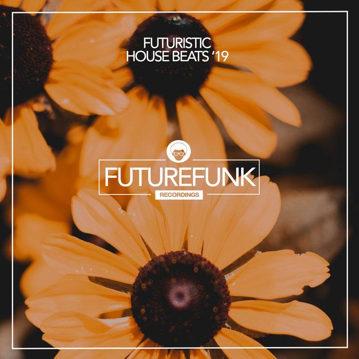 VARIOUS/DAVID SANCHES - Futuristic House Beats '19