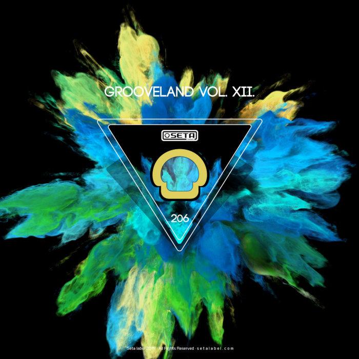 VARIOUS - Grooveland Vol 12