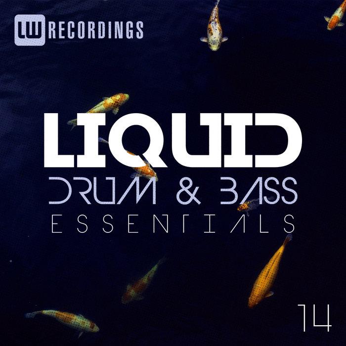 VARIOUS - Liquid Drum & Bass Essentials Vol 14
