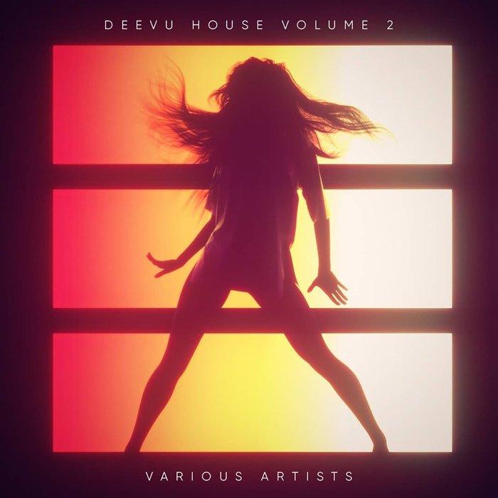 VARIOUS - Deevu House Vol 2