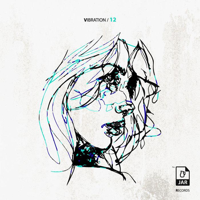 VARIOUS - Vibration 12