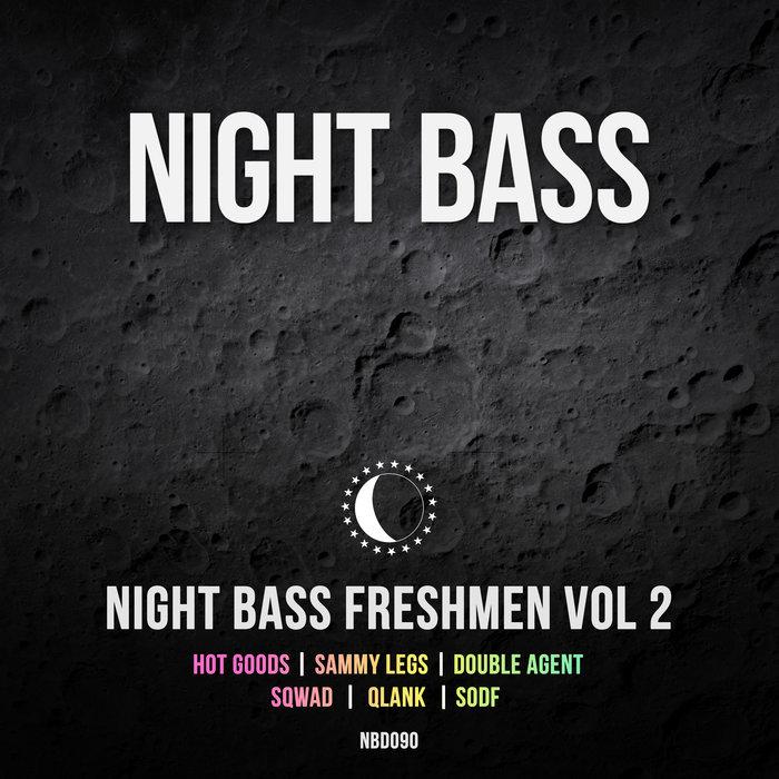 VARIOUS - Night Bass Freshmen Vol 2