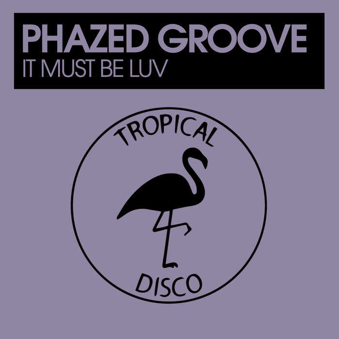 PHAZED GROOVE - It Must Be Luv