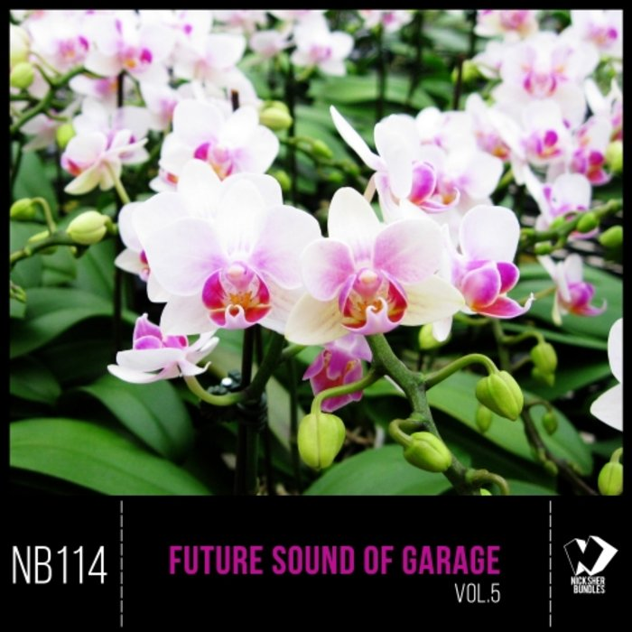 VARIOUS - Future Sound Of Garage Vol 5
