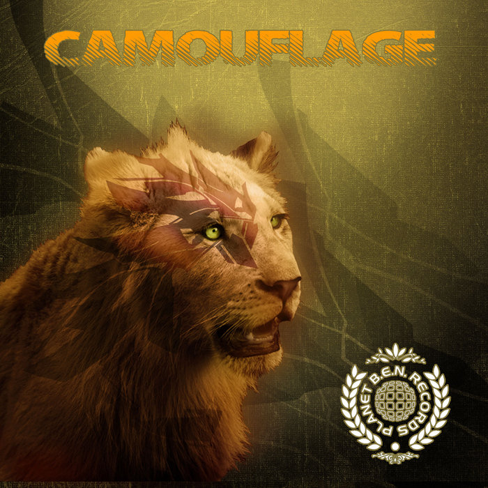 VARIOUS - Camouflage