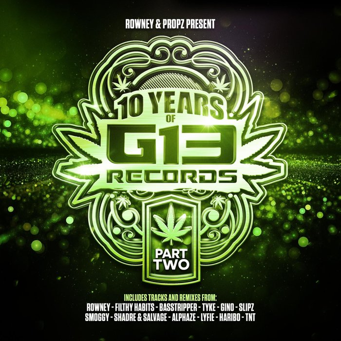 VARIOUS - 10 Years Of G13 Records Part 2