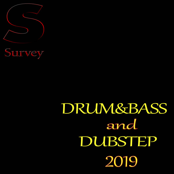 VARIOUS - DRUM&BASS & DUBSTEP 2019