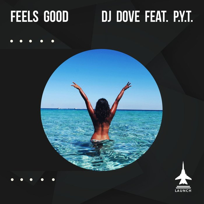 DJ DOVE feat PYT - Feels Good