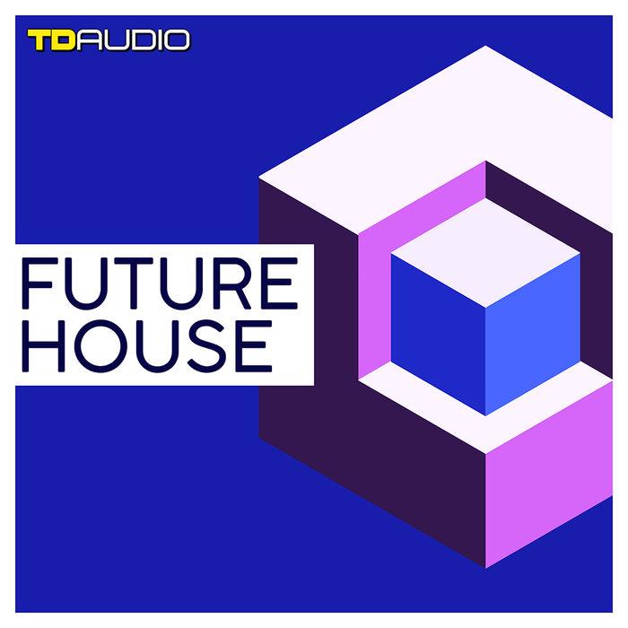 TD AUDIO - Future House (Sample Pack WAV/VSTi Presets)