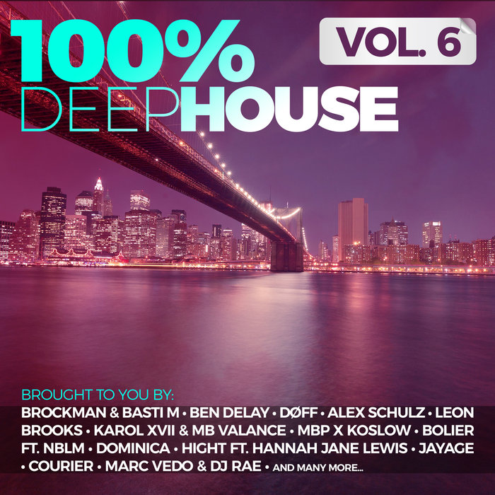 VARIOUS - 100% Deep House Vol 6
