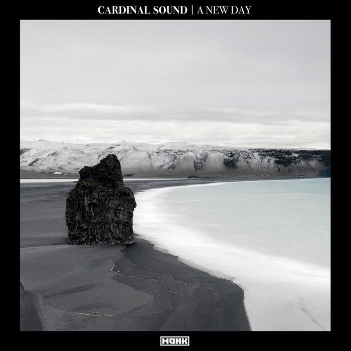 CARDINAL SOUND - A New Day