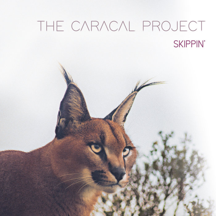 THE CARACAL PROJECT - Round One