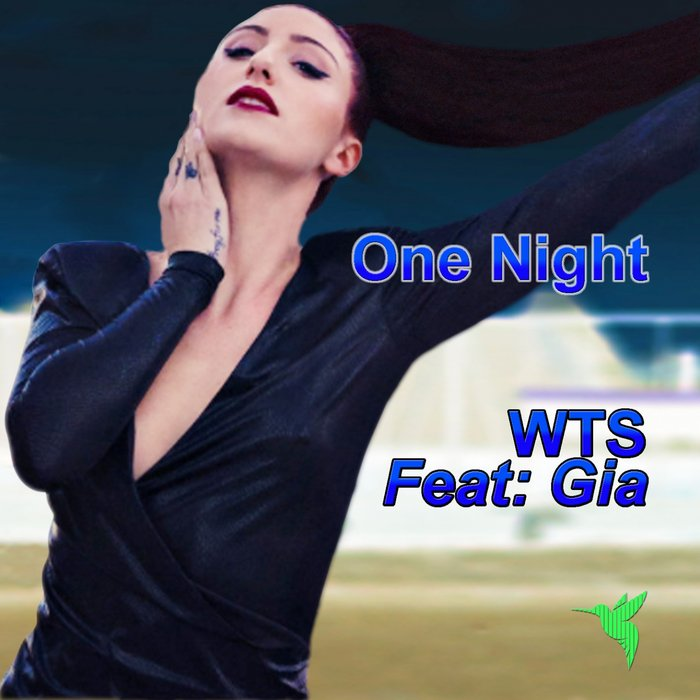 WTS feat GIA - One Night (Charles Jay Mix)