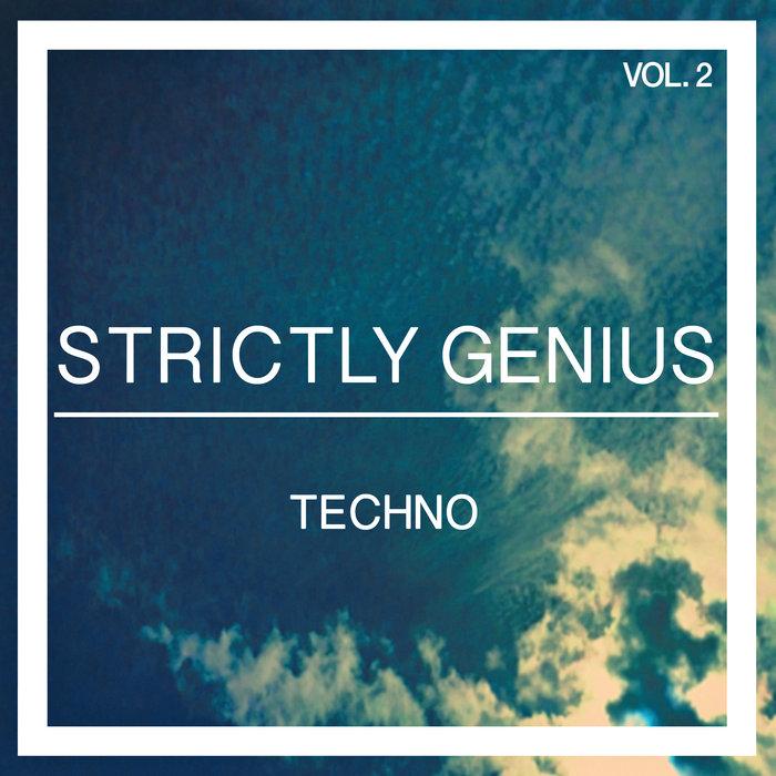 VARIOUS - Strictly Genius Techno Vol 2