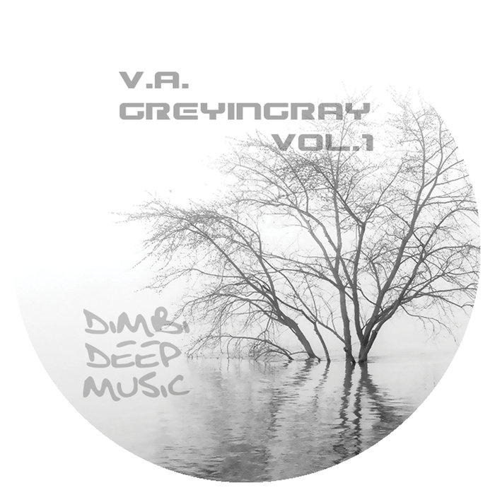 VARIOUS - Grey In Gray Vol 1
