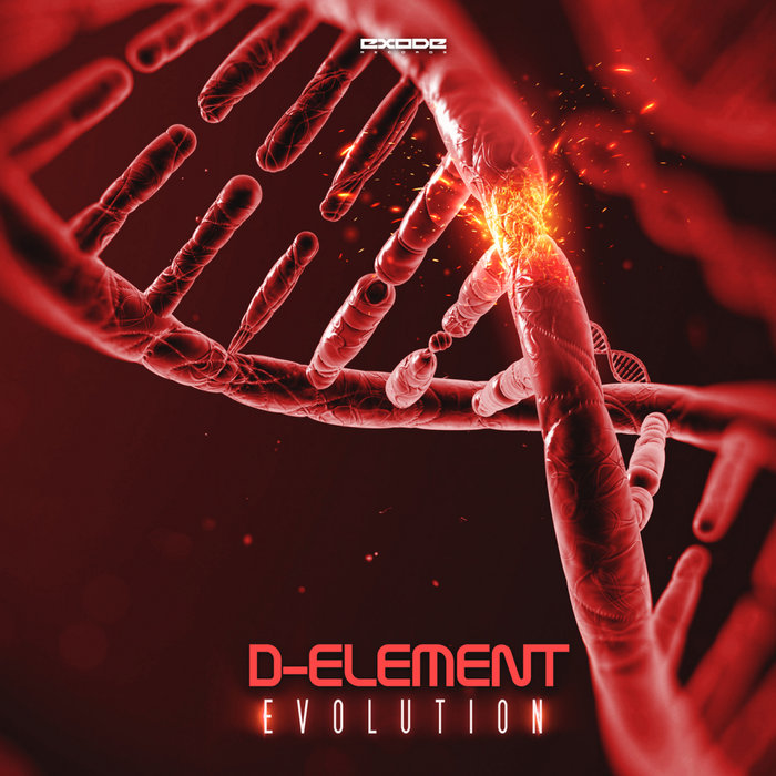 D-ELEMENT - Evolution