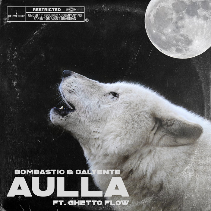 BOMBASTIC/GHETTO FLOW AND CALYENTE - Aulla
