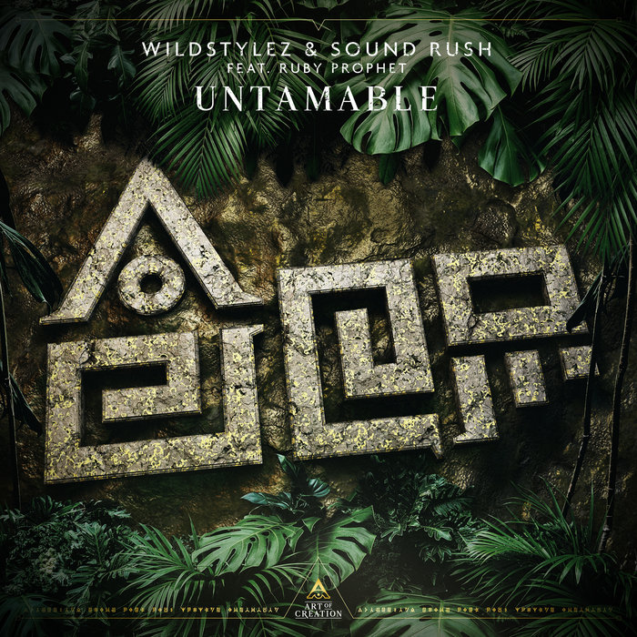 WILDSTYLEZ/SOUND RUSH - Untamable