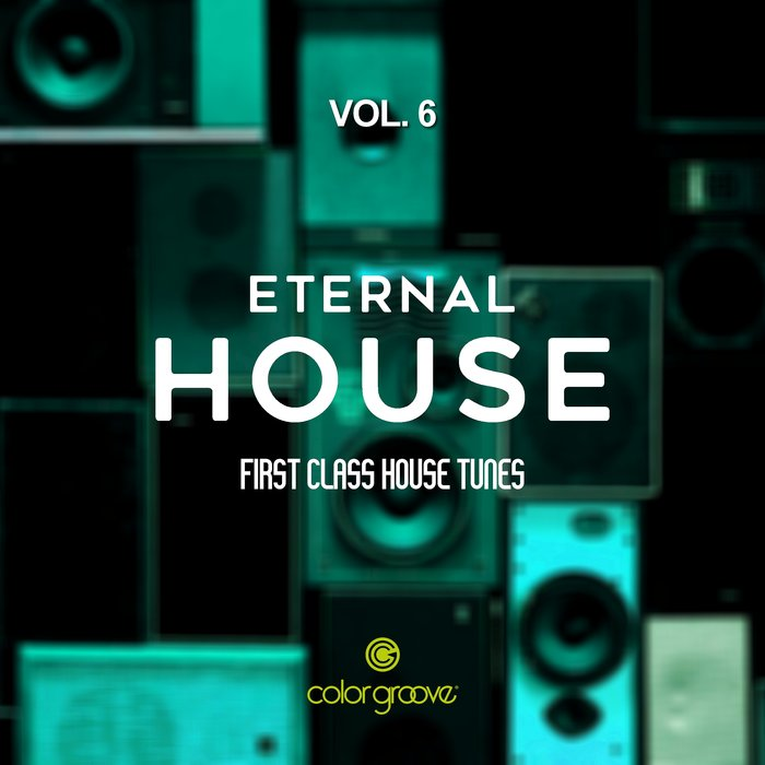 VARIOUS - Eternal House Vol 6 (First Class House Tunes)