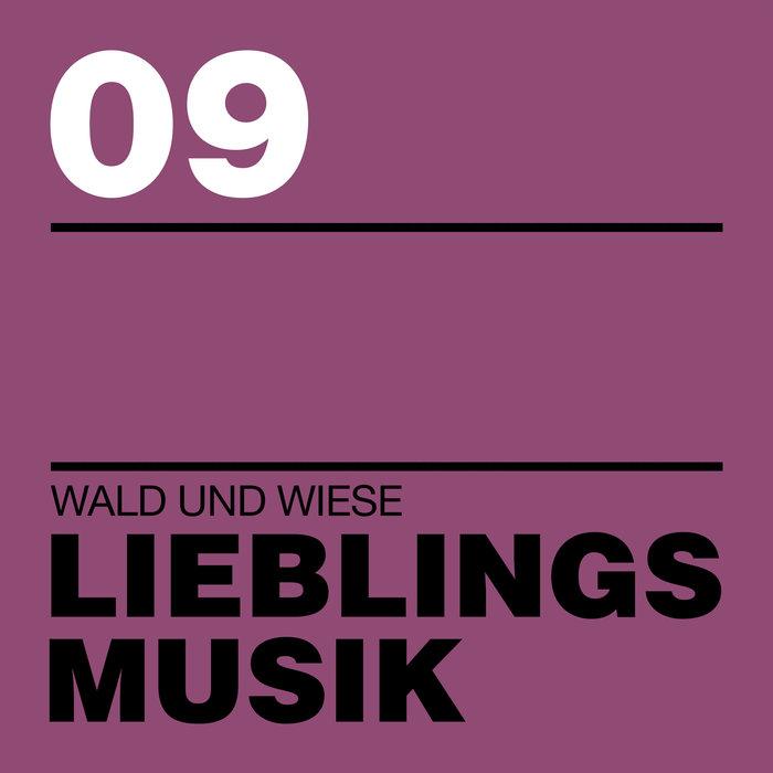 VARIOUS - Lieblingsmusik 09