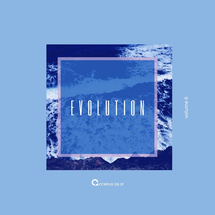 VARIOUS - Evolution 6