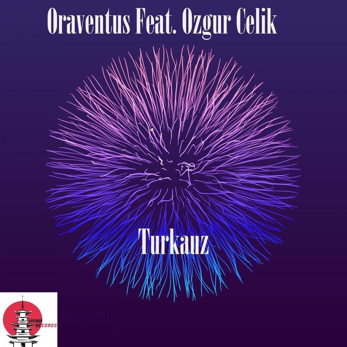 ORAVENTUS - Turkuaz
