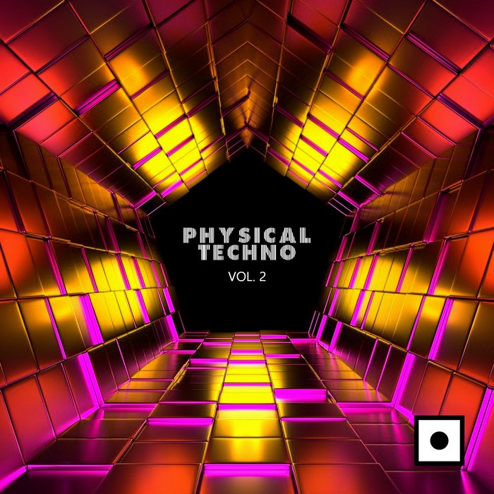 VARIOUS - Physical Techno Vol 2