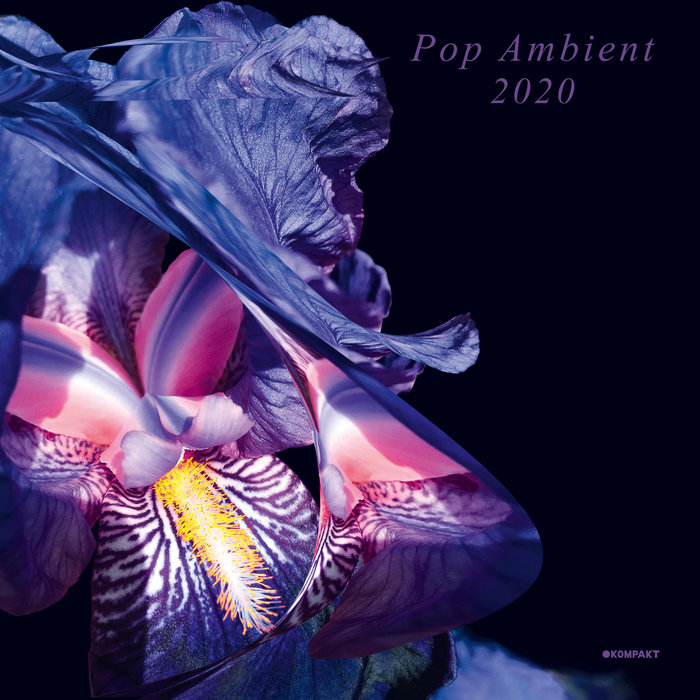 VARIOUS - Pop Ambient 2020
