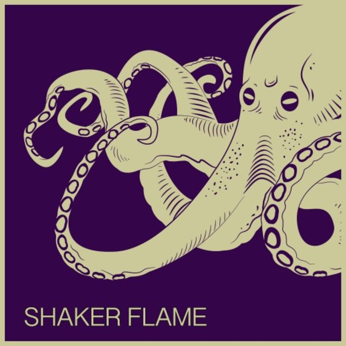 TOPOS BONGO/COSMIC PHOSPHATE & D33TRO7/GLITCH VUU/JASON'S AFRO HOUSE CONNECTION - Shaker Flame