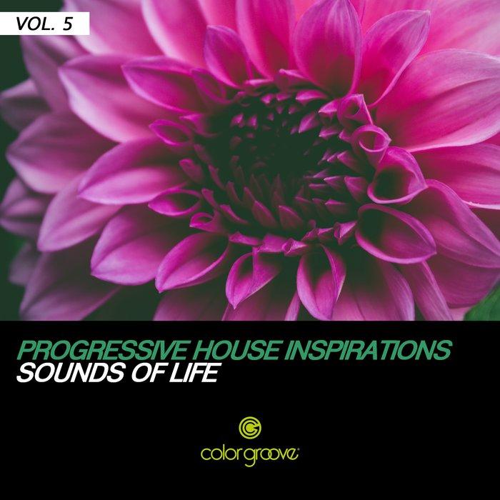 VARIOUS - Progressive House Inspirations Vol 5 (Sounds Of Life)