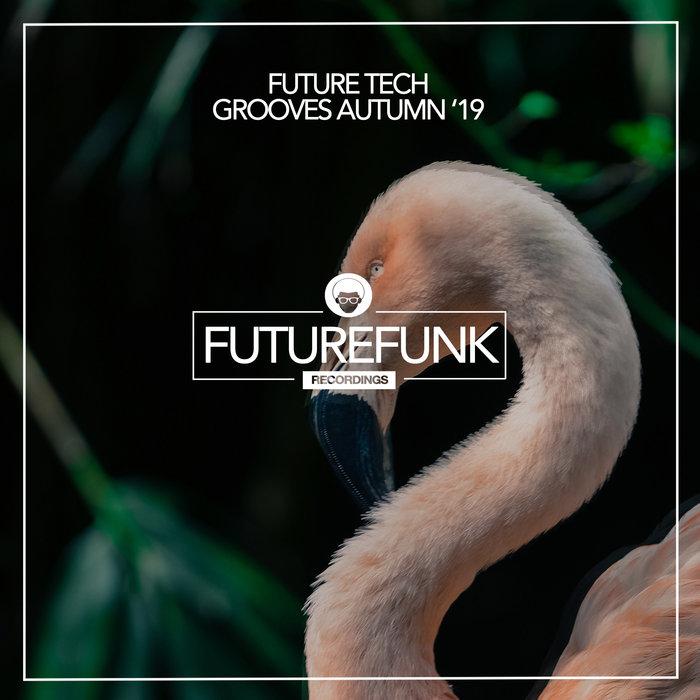 VARIOUS/MARTIN FISHER - Future Tech Grooves (Autumn '19)