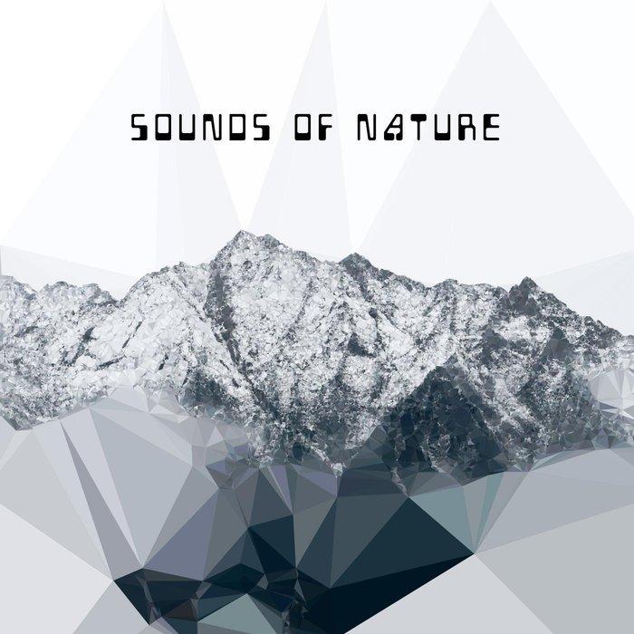 VARIOUS - Sounds Of Nature