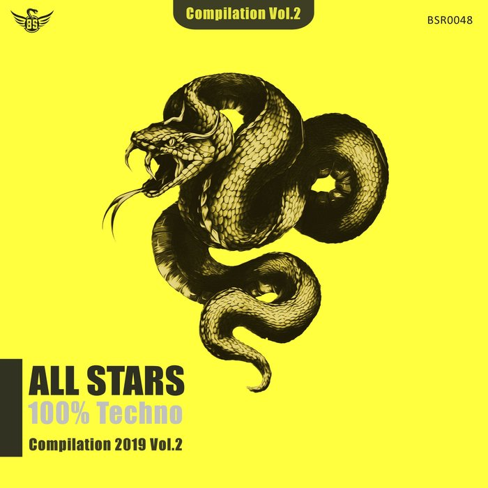 VARIOUS - All Stars Compilation 2019 Vol 2